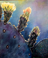 Prickly Pear Bloom -Available